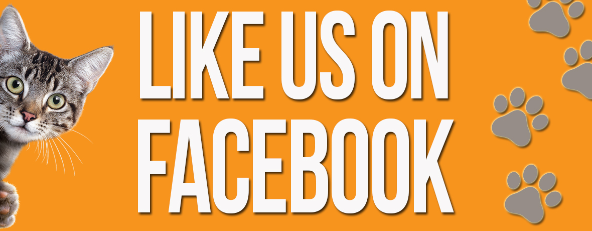 Like Us On Facebook_sidebar